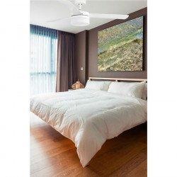 Ventilatore da soffitto, Panay bianco, 120 cm, bianco/acero, con luce, Faro
