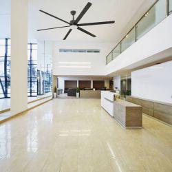 Ventilatore da soffitto da soffitto, KHIOS LED, DC, diametro 305cm, per grandi superfici, con punto luce potente, nero, Faro.