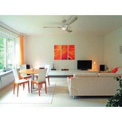 Ventilatore a soffitto, 132 cm, con lampada a LED, lame in titanio, corpo in titanio.