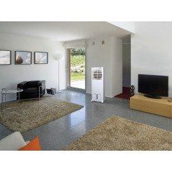 Raffrescatore evaporativo, Rafy 120, ideale per uffici/ grandi saloni/ ristoranti etc, Purline